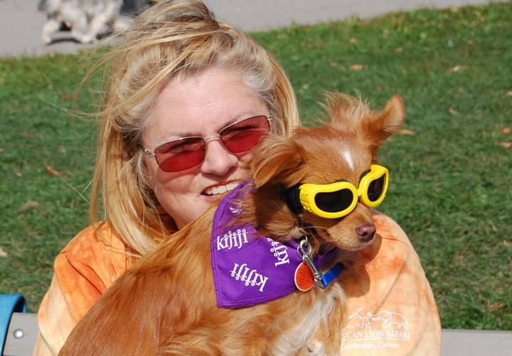 sunglasses, cute, funny, fun, little, summer, dog, nature, young, grass, woman, portrait, outdoors, pet, animal, mammal, friendship, looking, hair, eye