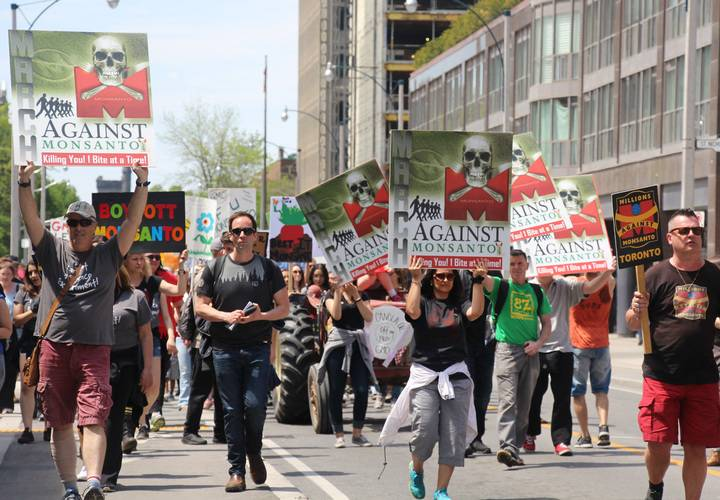 Protesters and activists march along Yonge street in Toronto.
