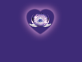 Logo on purple png
