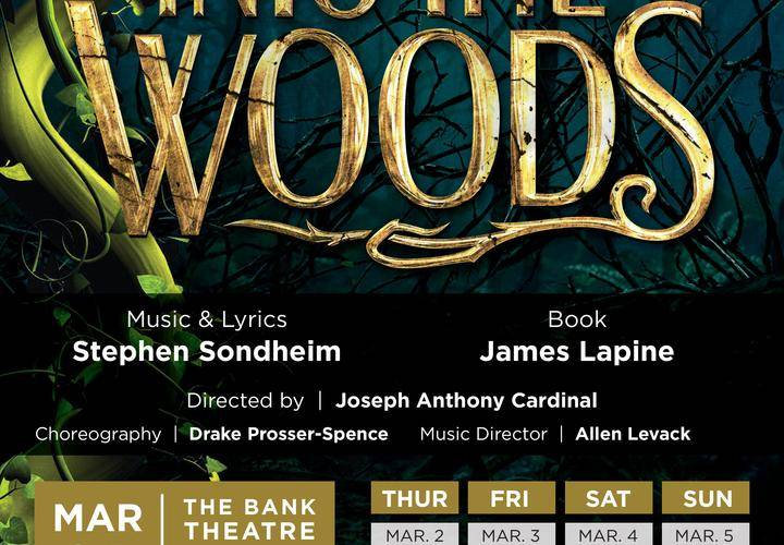 into the woods a musical by james lapin He has won the tony award for best book of a musical three times, for into the woods  pinter into the woods by james lapine  and written by james lapin.