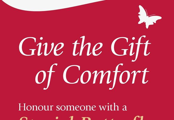 Holiday hospice butterfly banner final