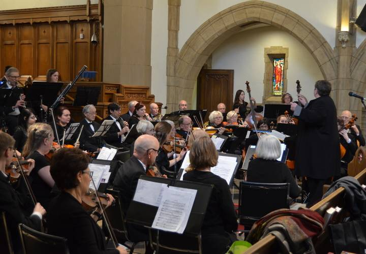 Dundas Valley Orchestra in performance January 29, 2017
