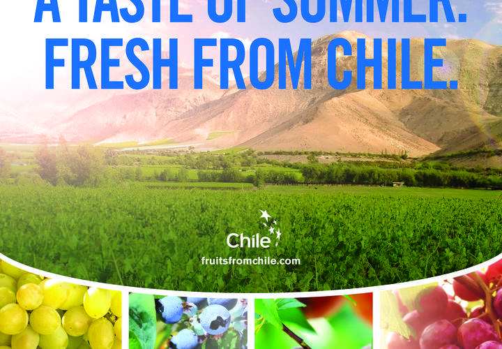 Winter Here = Summer in Chile