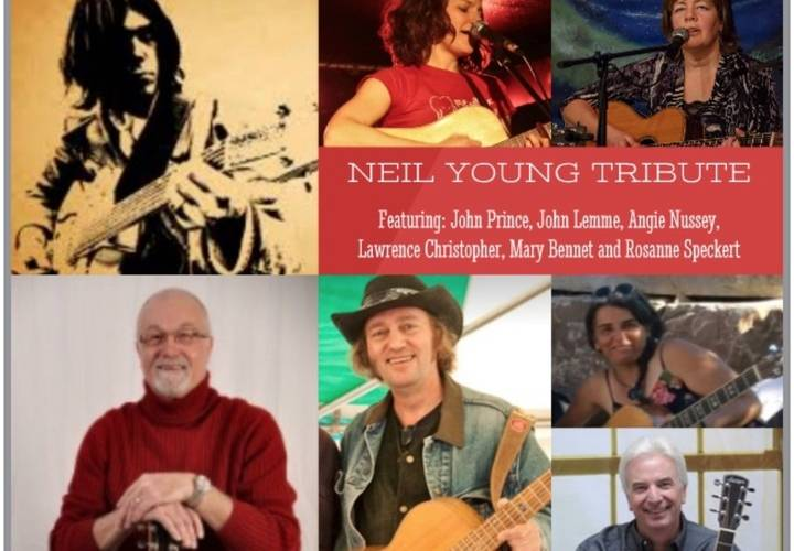 Neilyoungcollage