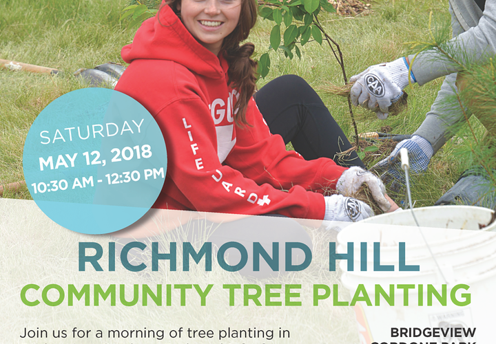 2018 richmond hill community tree planting event 1 opt1000