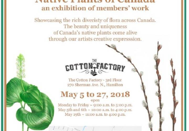 Bac may 2018 exhibition