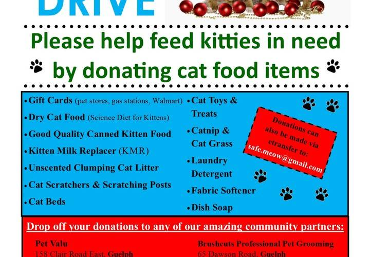 Safemeow donation drive flyer