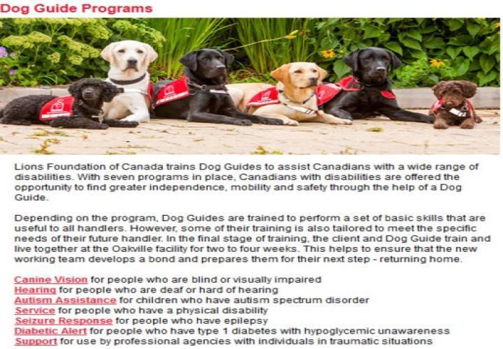 Seven dog guide programs   w