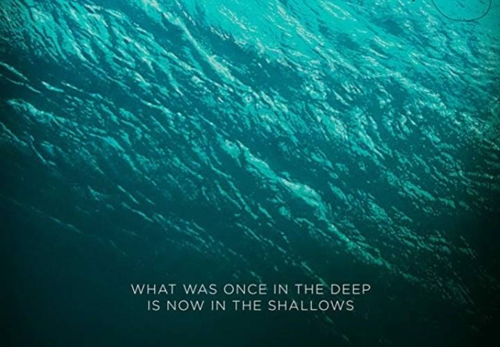 The shallows cover resized