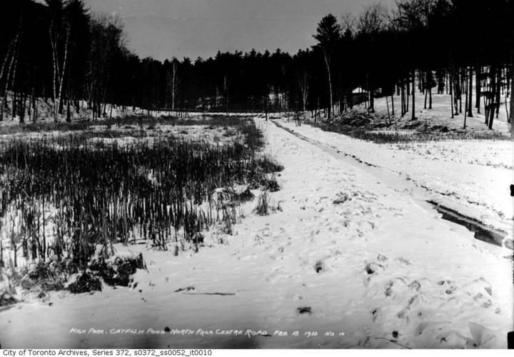 High park catfish pond   north from centre road  february 18  1913