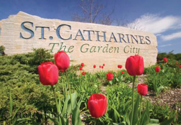 St. catherines header